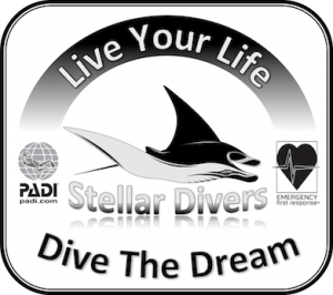 Stellar Divers, the favourite choice PADI Scuba Diving School in Lincoln UK