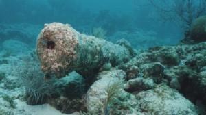 Ocean Cannon