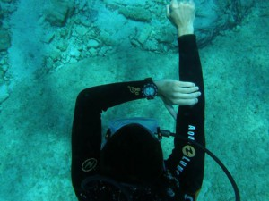 PADI Underwater Navigation, Stellar Divers, Lincoln