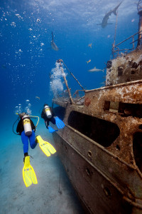 Stellar Divers PADI 5 Star Dive & Service Centre Lincoln